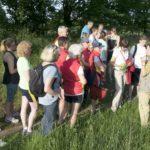 Rudertour mit Kräuterwanderung